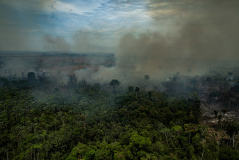 Novo Progresso, Pará, Brazil.- In the aerial photos taken in the Jamanxim Environmental Protection Area, in the city of Novo Progresso, Pará state, by Greenpeace activists released today August 27, 2019, fires can be observed in areas where they have started to develop livestock farming activities. These images would show that at least part of the fires are generated as a method of clearing the forest, mainly to use land for grazing cattle, or crop plantations, such as soybeans, used as fodder for pigs and cows. The flexibilization of areas of mining and agro-livestock exploitation of the Amazon that Jair Bolsonaro implemented since his assumption as President of Brazil, has allowed the dismantling to expand, setting the forest on fire is a frequent method used by producers, cheaper than hiring bulldozers . In addition, in many areas of South America there is a superstitious belief that ashes improve the soil for crops.